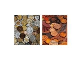 Альбом для монет на кольцах, Оптима, 225х265 мм, обложка ламинированный картон