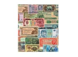 Альбом для бон на кольцах, 225х265 мм, «Для банкнот», обложка ламинированный картон, формат Оптима