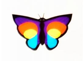 Воздушный змей «Бабочка 90х60»